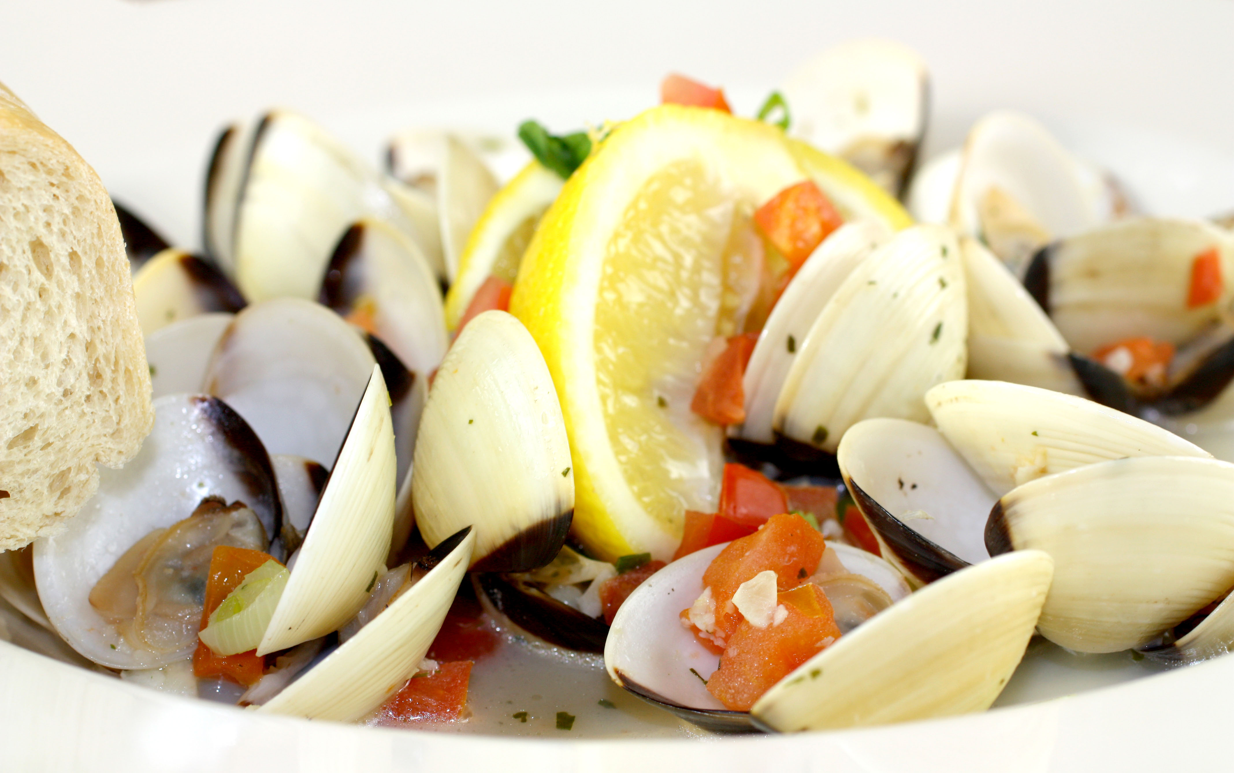 Fresh Manilla Clam Steamers from Fresh Off The Hook Boise Idaho